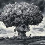 Detén la catastrofe